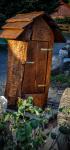 drevorezba-vyrezavani-carving-wood-drevo-socha-vcely-klat-ambroz-radekzdrazil-20200520-08